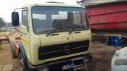 Mercedes benz Horse for sale
