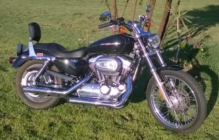 Harley Davidson XL 1200 Custom and Davis Trailer Cheetah 12 for sale